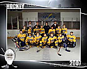 Hockey Team Graphic
