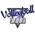 Legacy Sports Logo-Volleyball