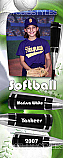 Softball Locker Poster