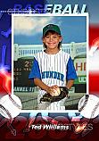 Baseball Designer Magnet